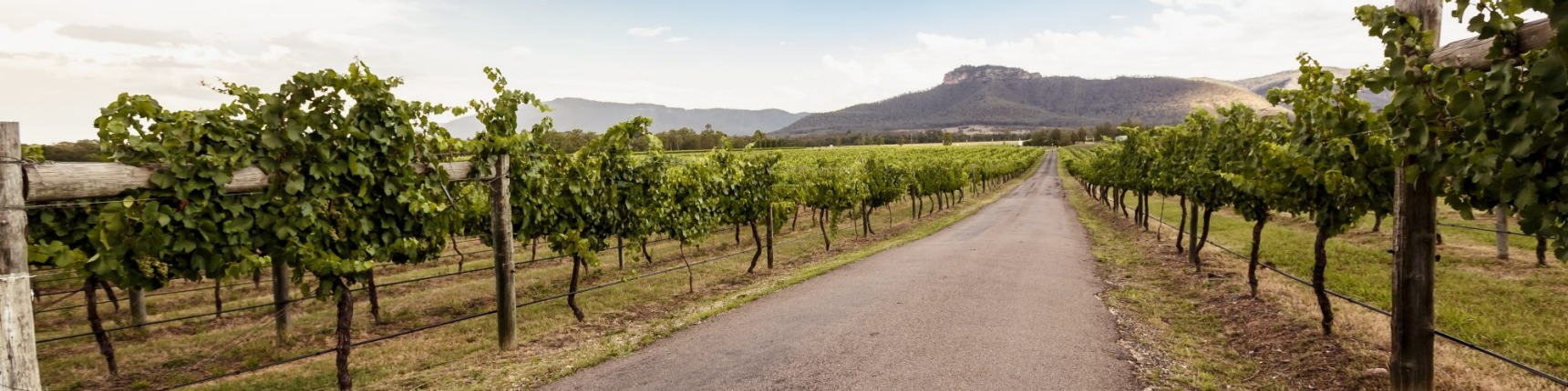 Hunter valley nsw new south wales australia