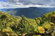 Barrington Tops, NSW