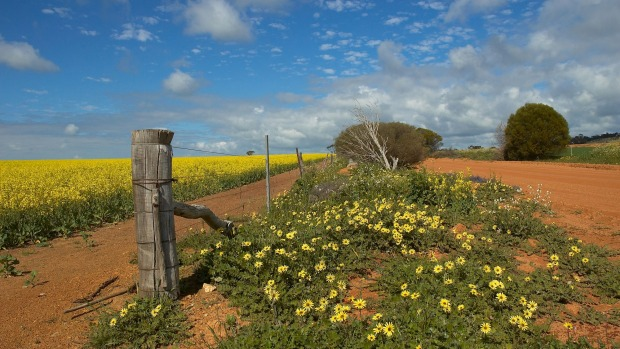 Wheatbelt Travel Guide Plan Your Holiday In Wheatbelt