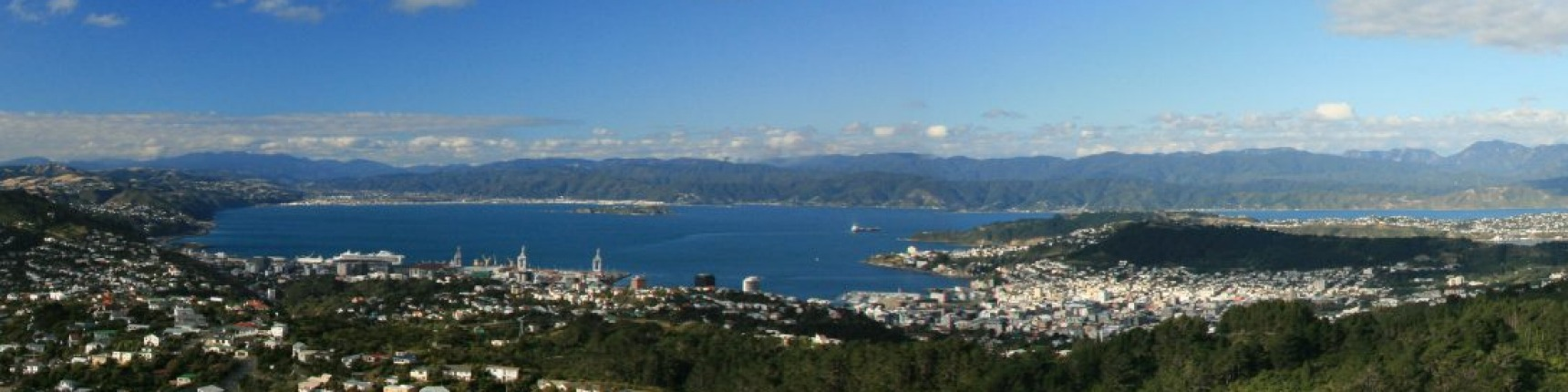 Wellington, New Zealand, aerial shot