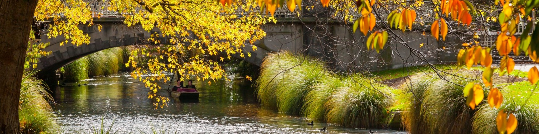 Christchurch, New Zealand, rowing, river