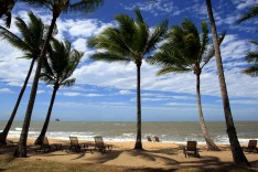 Palm Cove, Queensland