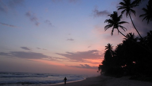 Picturesque place: As the palm trees fade to silhouettes, we choose our fish from the day's catch and sup to the sound ...