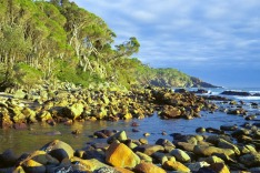 Eden, New South Wales