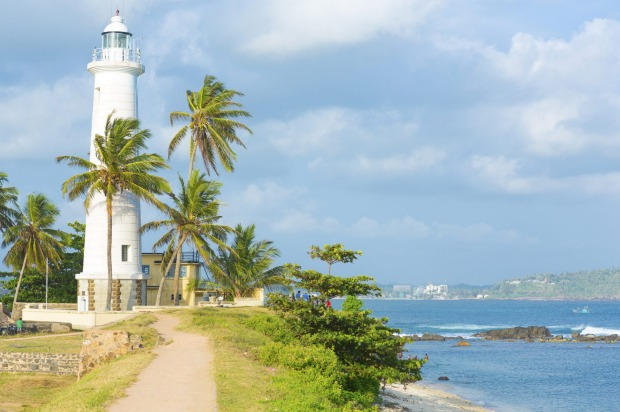SRI LANKA: How much can you fit into a small island? How about soaring, rainforest-covered mountains, ancient temples, ...