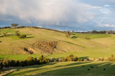 heathcote victoria country side