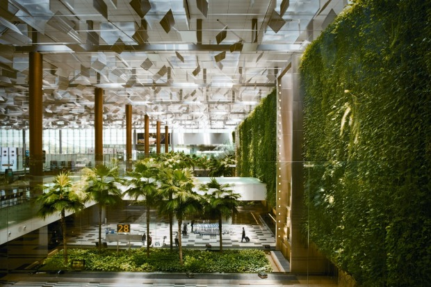 The vertical 'green wall' garden in Terminal 3 at Changi Airport.