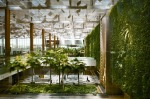 INSIDE SINGAPORE'S CHANGI AIRPORT: The vertical 'green wall' garden in Terminal 3 at Changi Airport.