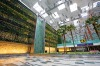 Trees and plants dot the building, which boasts a five-storey vertical garden with waterfalls at Changi Airport.
