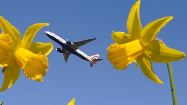 Rising interest ... British Airways is taking the lead in research into sustainable jet fuel.