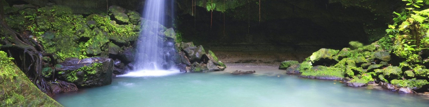 DOMINICA: Emerald pool deep in the rainforest.