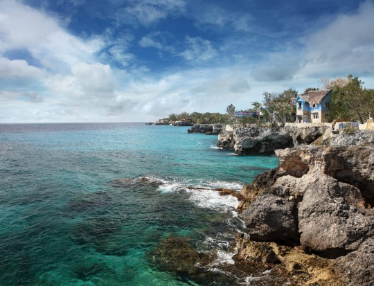 JAMAICA: With a cultural impact far outweighing its size, Jamaica has an unmatched intensity and sense of feistiness.  ...