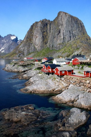 This is Stamsund, a little fishing village in the Lofoten Islands. It holds a special place in my heart. I looked after ...