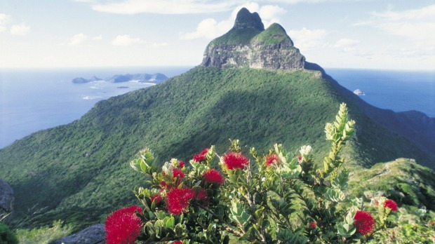 High vantage point: Mount Gower on Lord Howe Island.