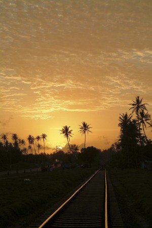 Westward-ho: A branch of the Sri Lankan railways heads into the sunset.