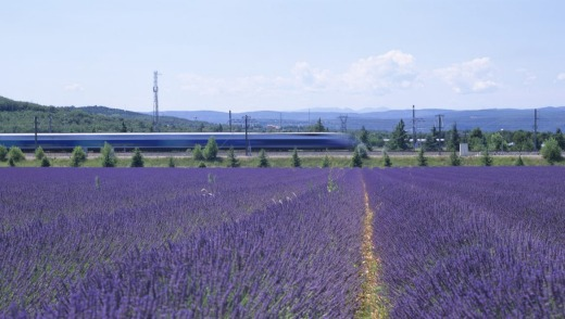 Flying through France: The TGV high-speed train passes glorious sights such as lavender fields.
