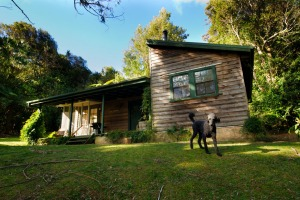 Red Dog Retreat, Kangaroo Valley, NSW.