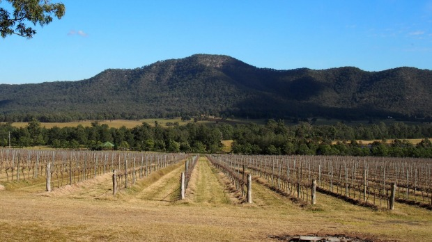 Weekend with a view: Mio Monte looks out across the vine-filled valley to Mt Broke.