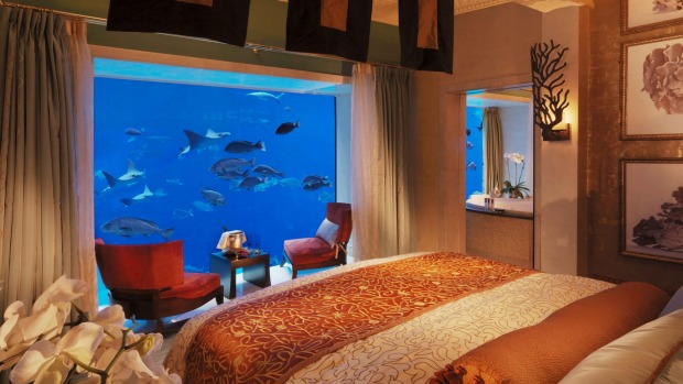 Luxe deluxe: The two underwater suites feature floor-to-ceiling windows directly onto the aquarium.