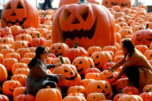 Visitors pose for photos in an installation consists of 500 pumpkin lights to mark the Halloween in Shenyang, northeast ...