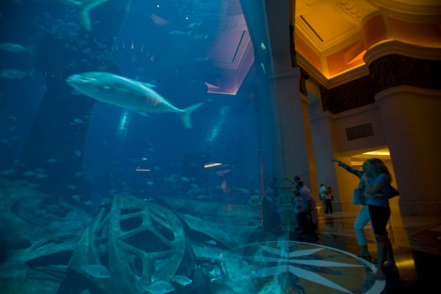At Atlantis, this includes water thrills, a marine habitat and more than a dozen restaurants run by world-class chefs ...