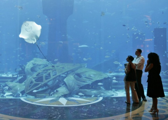 "The marine habitat at the Atlantis will be stocked with thousands of marine animals and include a ""Dolphin Bay""."