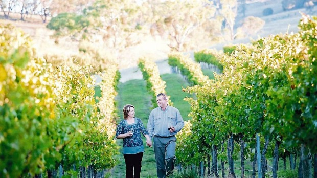 Food and drink haven: A couple stroll through the Mayfield vineyard in Orange, NSW.
