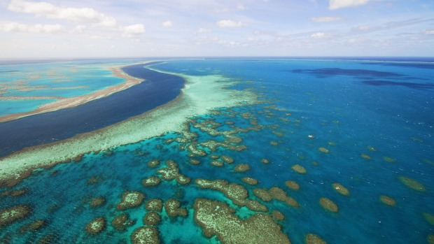 The Great Barrier Reef in the Whitsundays, Queensland.