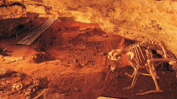 Stretching back to the arrival of humans: Naracoorte Mammal Fossil Sites, South Australia.