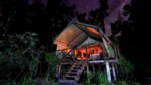 Close to nature: Paperbark Camp deluxe tent at night.