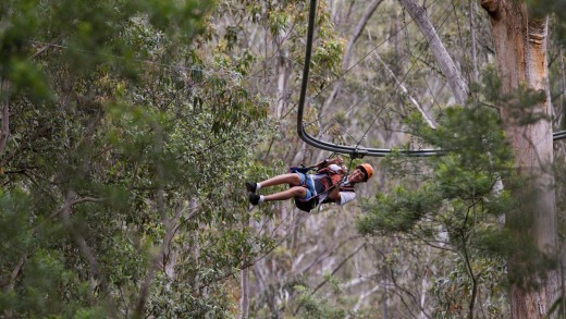 Thrilling: Riders zigzag through 40 obstacles while being suspended about six storeys high.
