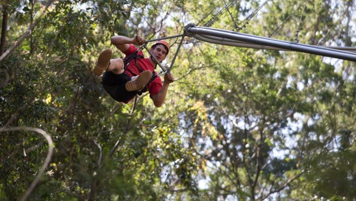 Three times the length of any tree-base zipline in the world: The Crazy Rider.
