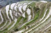 Landscapes of Guangxi, China: Amid terraced rice fields and jagged peaks straight from a Chinese scroll painting, ...