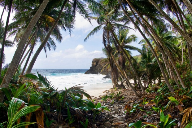 Dolly Beach, Christmas Island. It is usually the local detention centre that makes headlines, but for naturalists such ...