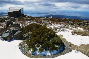 On top of Mount Wellington: All covered in snow.