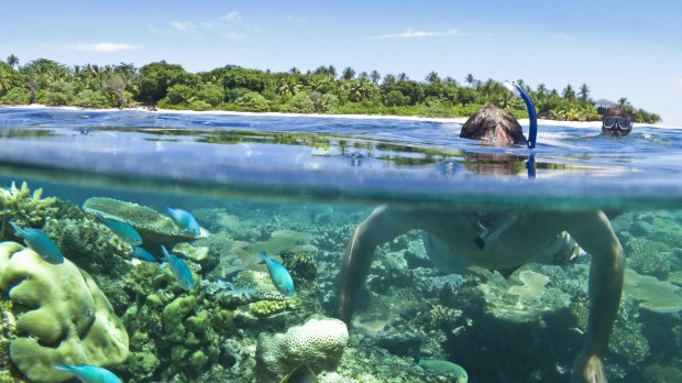 Vomo Lai Lai, Fiji. Terrific snorkelling is available.