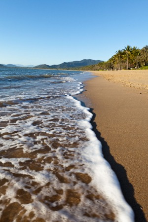 Perfect family beach: Palm Cove, Cairns, Queensland.