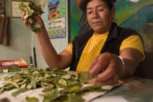 The future: Fortune teller reading coca leaves, Los Jardines, Peru.