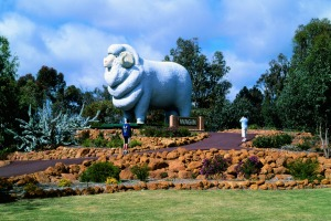 The Giant Ram, Wagin.