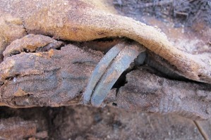 A hand from one of the ancient mummies.
