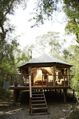Paperbark Camp, Jervis Bay, NSW: Australia's glamping pioneer has a new king deluxe tent. Larger than its two-person ...