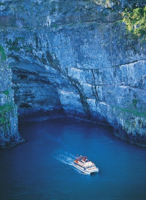 BLACK CAT AKAROA HARBOUR NATURE CRUISES, NEW ZEALAND:  The historic French village of Akaroa on New Zealand's South ...