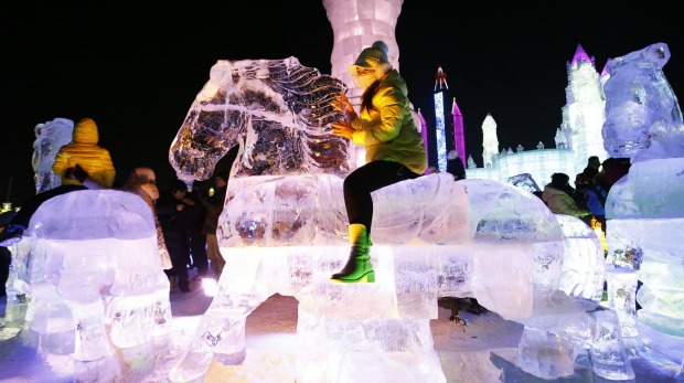 A woman rides horse-shaped ice sculpture iduring the opening day of the Harbin International Ice and Snow Festival in ...