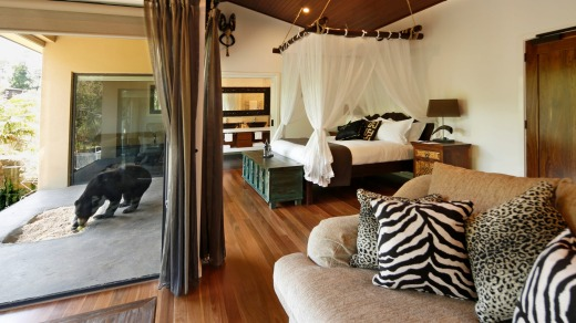 Rare view: Guest accommodation at the Jamala Wildlife Lodge.