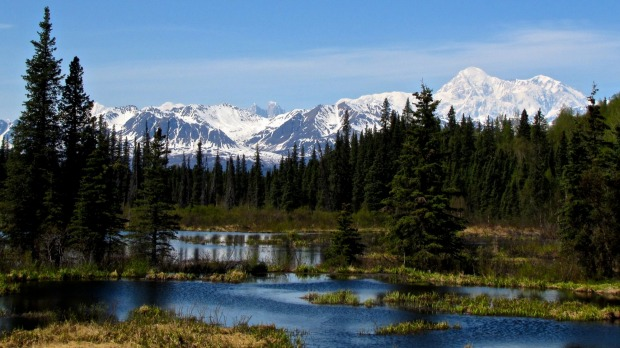 Mount McKinley is the highest mountain in North America.