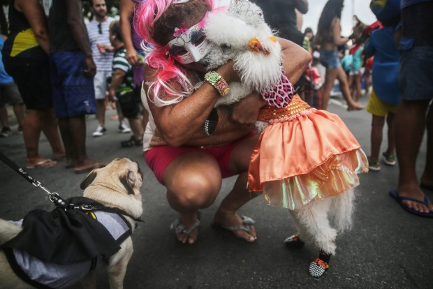 A costumed dog is hugged by its owner during a 'bloco' street parade honoring pets, specifically dogs, during ...