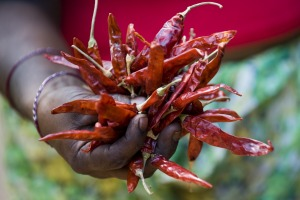 Dried red chilies are a signature ingredient of Sri Lankan food.