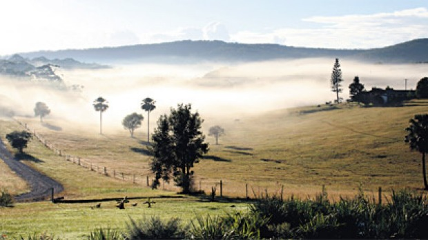 Low country ... mist rises in a valley near Pacific Palms.