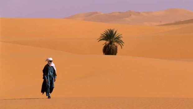 Well-trodden route ... walking in the dunes of the Libyan Sahara.