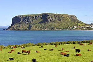 "Good to graze ... cattle farms meet the sea, and ""the Nut"" cliff formation."